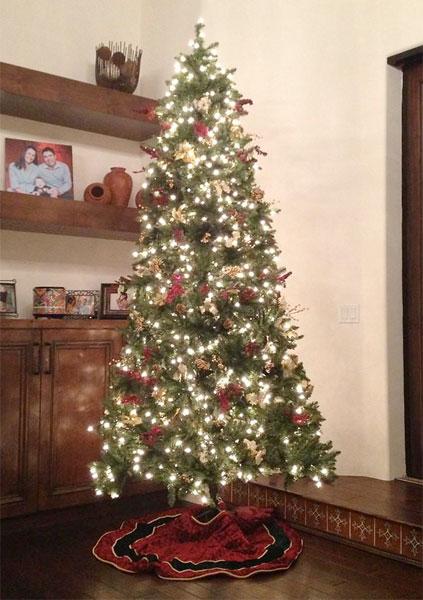 Arron Oberholser joked that his tree was for Festivas.