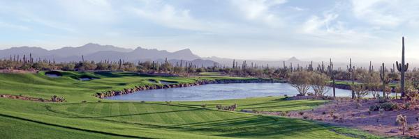 4. Best New Courses You Can Play                       Marana, Ariz.                       7,849 yards, par 72                       Green Fees: $80-$225                       520-572-3500                       ritzcarlton.com/dovemountain