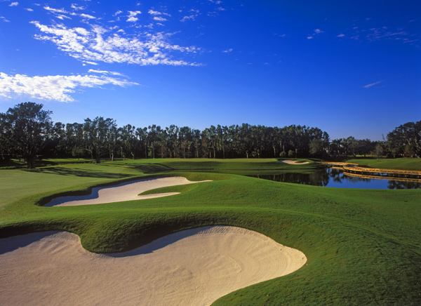 Palm Beach, Fla.                       Green fees: COMP-cart fees only ($35) in summer; $200-$215 high season)                       888-273-2537, thebreakers.comThe Breakers                       Palm Beach, Fla.                       Green fees: COMP-cart fees only ($35) in summer; $200-$215 high season)                       888-273-2537, thebreakers.com