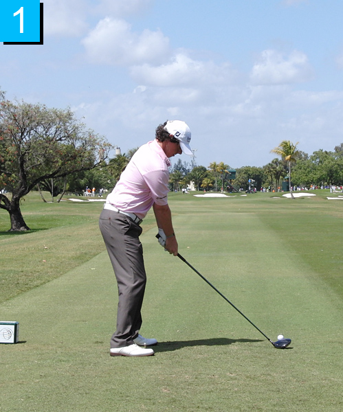 1. Rory is balanced on three well-defined posture angles (ear to hip, hip to knee joint, knee to ankle joint). His back is flat from his tailbone to just past the middle of his back, ideal for a powerful rotation.