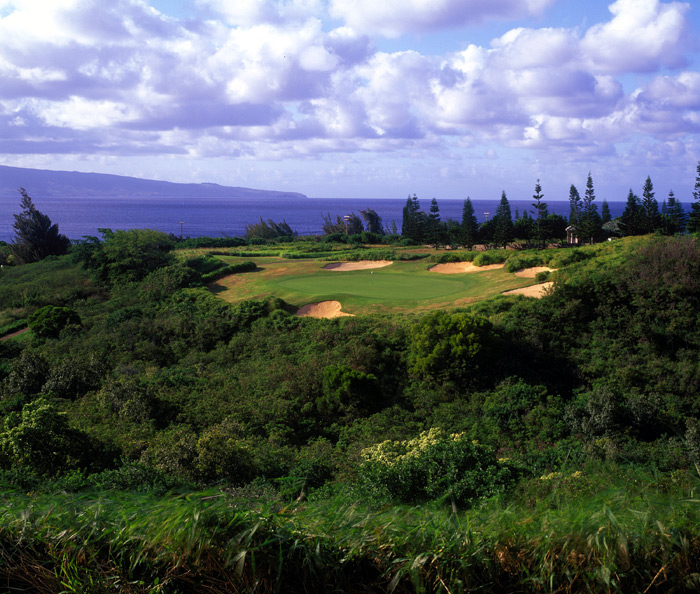 Plantation Course at Kapalua -- No. 8, 203 yards -- Maui, Hawaii                       A long iron over a tropical gorge with the island of Molokai looming in the distance. Paradise found. Titleist lost.
