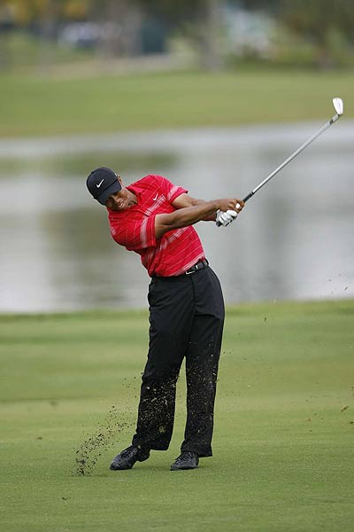 Talk of a perfect season ended at the WGC-CA Championship at Doral, where Woods finished two strokes behind winner Geoff Ogilvy.