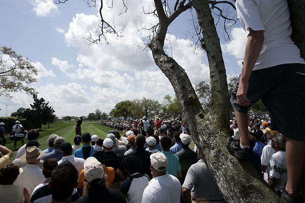 Fans did everything they could to catch a glimpse of Woods.