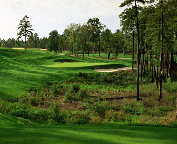 Pinehurst No. 8  -- Village of Pinehurst, N.C.                                   Green fees: $139-$219                                   800-487-4653, pinehurst.com