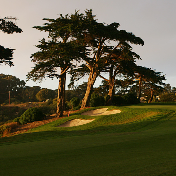9. Harding Park Golf Course                           San Francisco, Calif.                                                      Harding offers a heart-warming story of urban golf renewal in a glorious by-the-Bay setting, but when it comes time to recall distinctive, standout holes amid the fog and cypresses, it's all pretty hazy.                                                                                 • Most Underrated | Most Exclusive                           • All Course Rankings