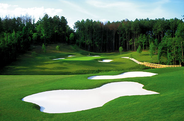 Bear's Best                       Atlanta, Ga.                       $49-$94                       clubcorp.com                                              While not on par with some other Golden Bear creations, this collection of all-star, Nicklaus-designed holes is pure fun. The par-3s that mirror Muirfield Village's 12th and PGA National Champion's 15th are standouts.