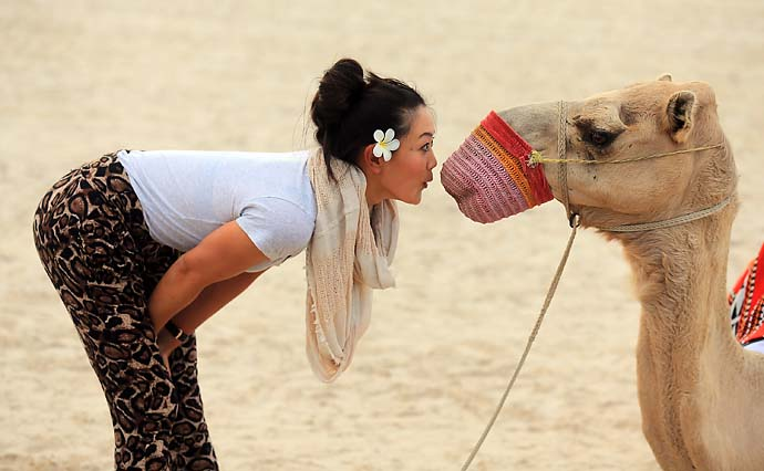 Michelle Wie comes up close with a camel on the beach at the Jebel Ali Golf Resort and Spa as a preview for the 2012 Omega Dubai Ladies Masters on Dec. 2, 2012.