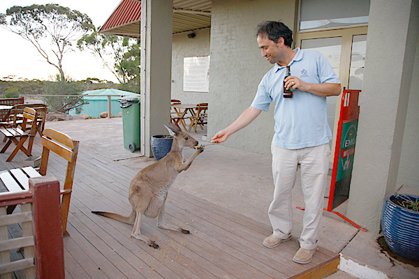 Sens was greeted at a local roadhouse by one of the millions of kangaroos that call the Nullarbor, and the course, home.
