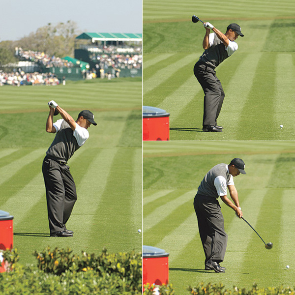 TOUR LESSONS                                                      On plane like Tiger                                                      Tiger Woods is a living example of the power of the O-Factor. Notice his level hips, driving left knee and braced right leg, and how he manipulates these body parts to perfectly slot the club. Between photo 1 and photo 2, Tiger's hands drop just a few inches, but look how much his hips rotate. They move from about 45 degrees closed to nearly square in the blink of an eye — so much for the theory that the arms start the downswing. Also notice Tiger's rear end — he squats to start his downswing. That keeps his posture in check as his hips unwind at a rapid pace. In photo 3, check out how his right shoulder has dropped straight down as his left hip has turned up. As a result, his hands and club return to the ball on plane.