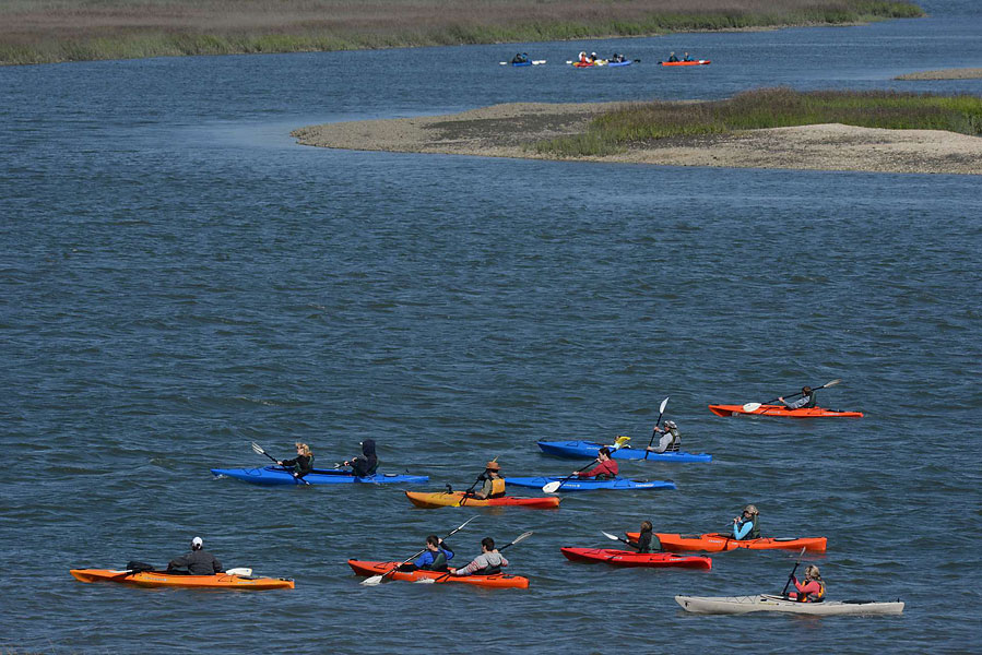 After golf, beach-going and bicycling, the next most popular activity on Hilton Head Island is kayaking through the intracoastal waterways and marshes that border the island on the western side. Kayakers encounter everything from dolphins and turtles to numerous birds and water fowl. Complete packages for the novice, children and experienced kayakers are offered at kayakhiltonhead.com