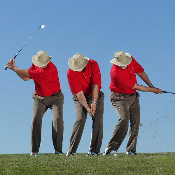 HIGH RISK                                                          LOW PUNCH                                                          Take a low-lofted club and punch the ball low. If it stays under the limbs it'll run all the way up to the green.                                                          BEFORE YOU GO FOR IT...                                                          Play the ball back in your stance, lean slightly forward and accelerate through to a low finish (hands never follow-through above your waist).
