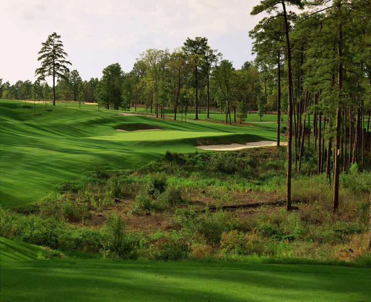 97. Pinehurst Resort (No. 8)                            Pinehurst, N.C. -- $150-$230, pinehurst.com