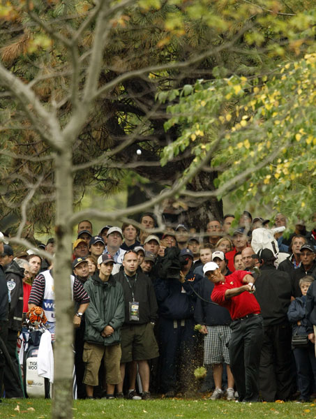 Charles Howell III's errant drives forced Tiger Woods to play several shot from the trees.