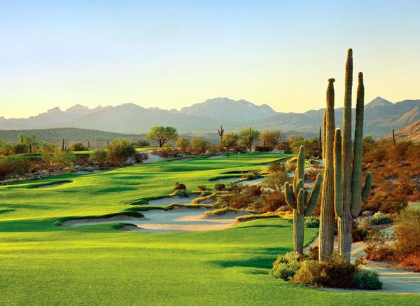 We-Ko-Pa Golf Club | Fort. McDowell, Ariz.                           Green fees: $75-$210                           480-836-9000, wekopa.com