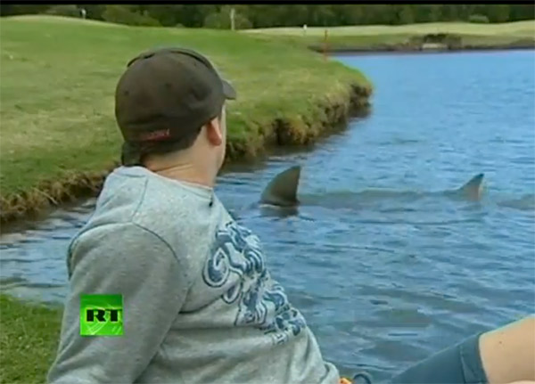 The Carbrook Golf Club in Brisbane, Australia, may have the most unique water hazard in the history of the game — a lake full of man-eating bull sharks. Yep, killer sharks that measure up to 10 feet in length are regularly seen poking their fins through the surface of the water by golfers as they set up to hit their shots just yards away.