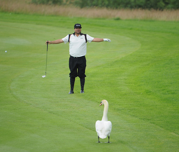 Joel Sjoholm tried to get a swan to move at the BMW International Open.