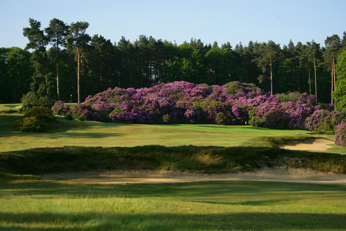 "Swinley Forest (No. 92 on Top 100 Courses in the World): ""Wonderful little course west of London. Perfect for a late summer evening round. Just magic.""More Top 100 Courses in the World: 100-76 75-5150-2625-1"