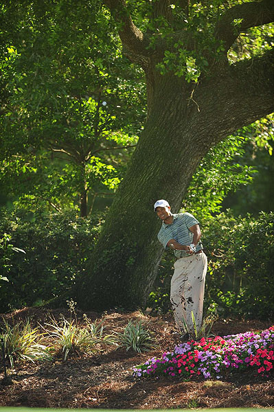 Woods, who started on the back nine, found himself in the flowers on the 14th hole, which he bogeyed.