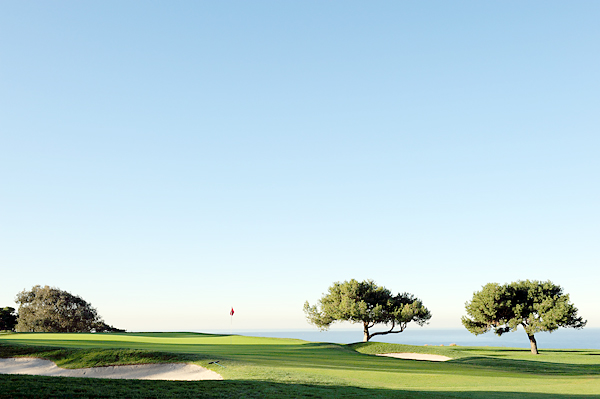 No. 20: Torrey Pines Golf Course; La Jolla, Calif.                           Designers: William F. Bell and Rees Jones