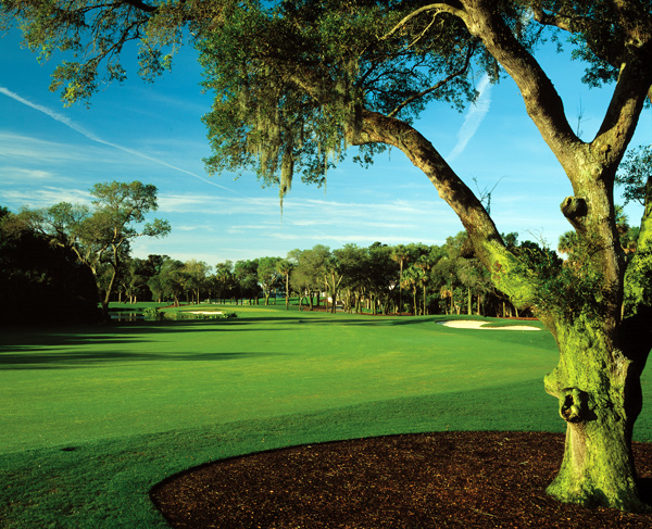 Kiawah Island Resort (Turtle Point) | Kiawah Island, S.C.                       Green fees: $175-$225; 843-768-6000; kiawahresort.com