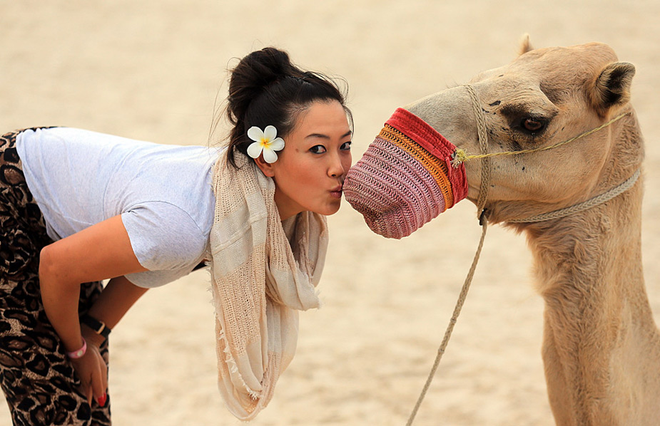 Michelle Wie joked around with a camel at the Jebel Ali Golf Resort and Spa at the 2012 Omega Dubai Ladies Masters.