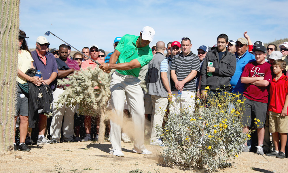 After mishitting his drive at the second, Woods had to hit lefty to get his ball out from behind a bush.