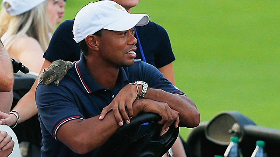 Sammy the Squirrel sits on Tiger Woods' shoulder, placed there by girlfriend Lindsey Vonn.