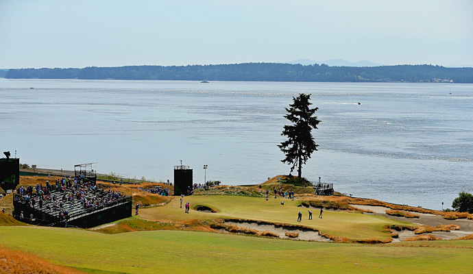 A lone douglas fir tree stands behind the 15th green.