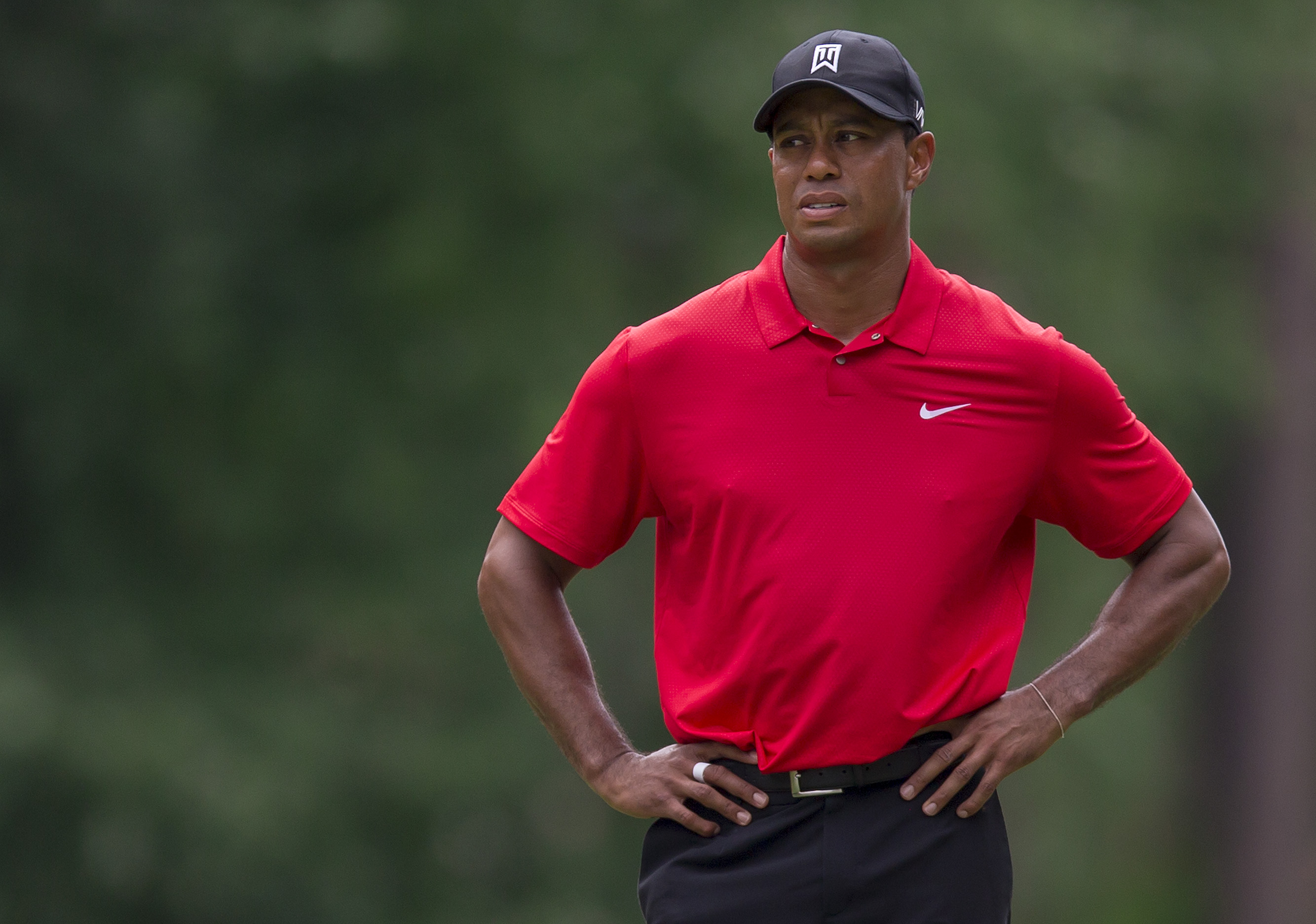 Tiger Woods pauses on the fifth hole during the final round of the Wyndham Championship at Sedgefield Country Club in August.