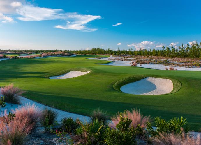 Tiger Woods, Tiger Woods klaut Rickie die Show!, Golfsport.News, Golfsport.News