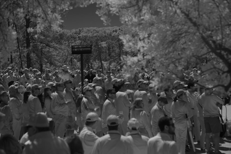 SI photographer Robert Beck took some scenic photos with an infrared lens Saturday at Augusta National.