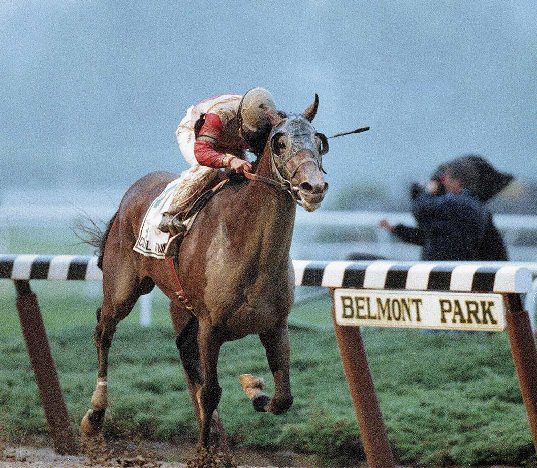1993 Belmont Stakes