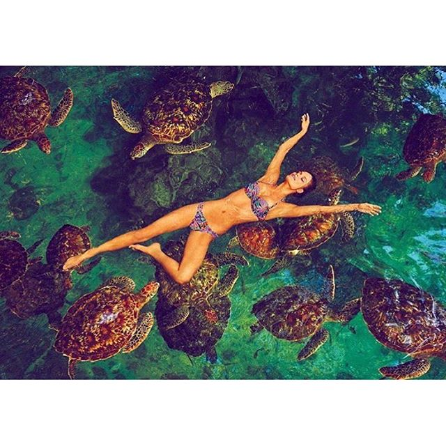 This actually did happen and even though the turtles considered me a piece of lettuce, it was so worth this picture @ruvenafanador @mj_day @si_swimsuit #zanzibar #ninaturtles