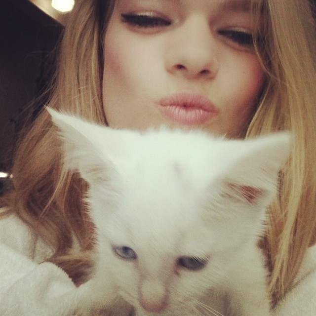 My little furry friend at today's shoot!! #bts #shoot #kitten #love