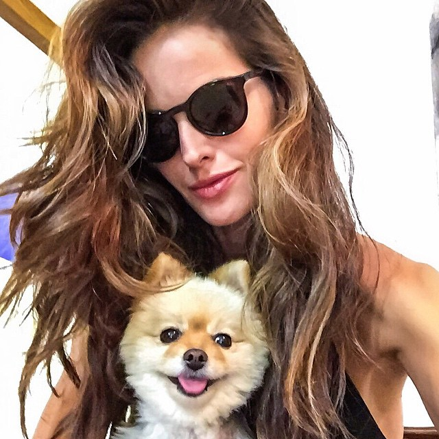 The best good morning of the day!! #harlow #mydog #bff #love #sweet #amor #bomdia #eueela #thebest #shelovestopose