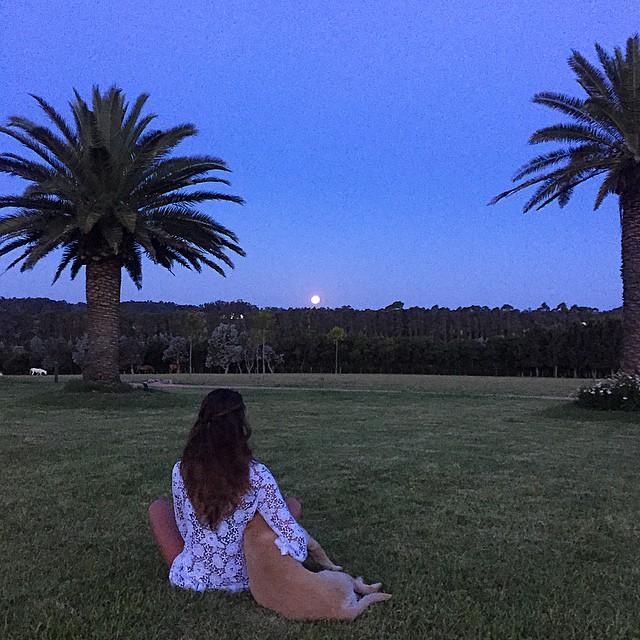 Full moon! Full life! Full everything!! #puntadeleste #gratitude #luacheia #fullmoon #nature #doglover #feliz#energia #2015