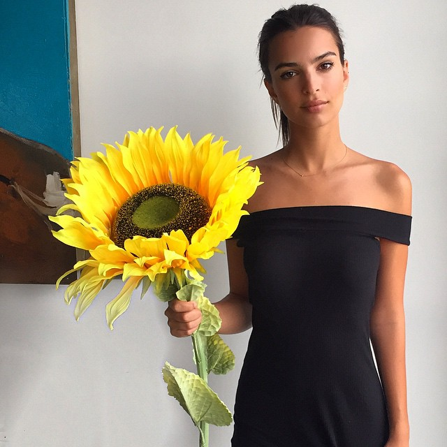 Why not buy a giant sunflower?