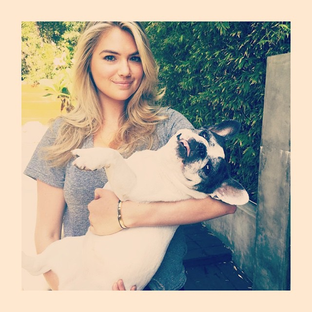 Luck bitch @soy_the_frenchie gets to be held by @kateupton! #buhi #kateupton #frenchbulldog #frenchie