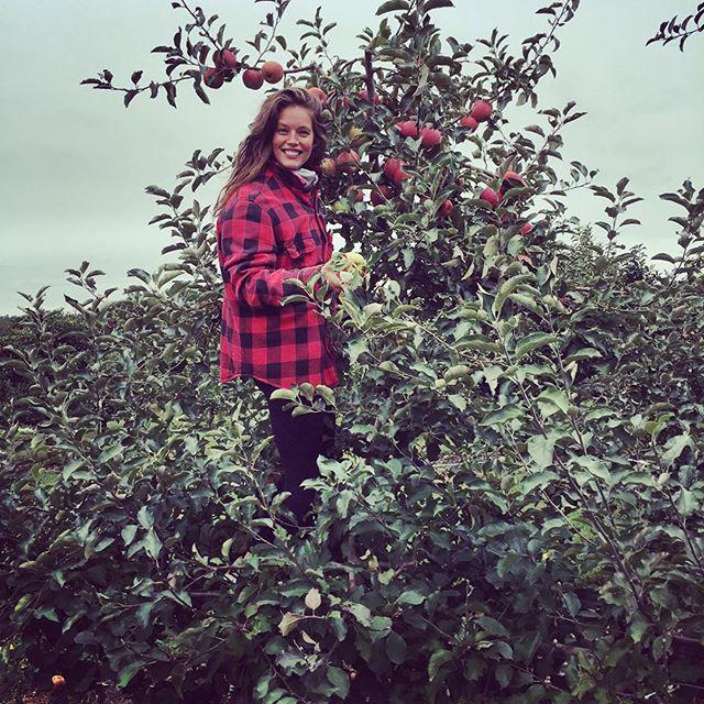 Apple picking day! #upstate #newyork @miasophia59