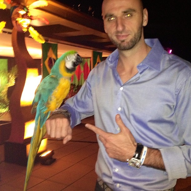 Man this bird os like dog!!! U can play with him!:) i want one!!!
