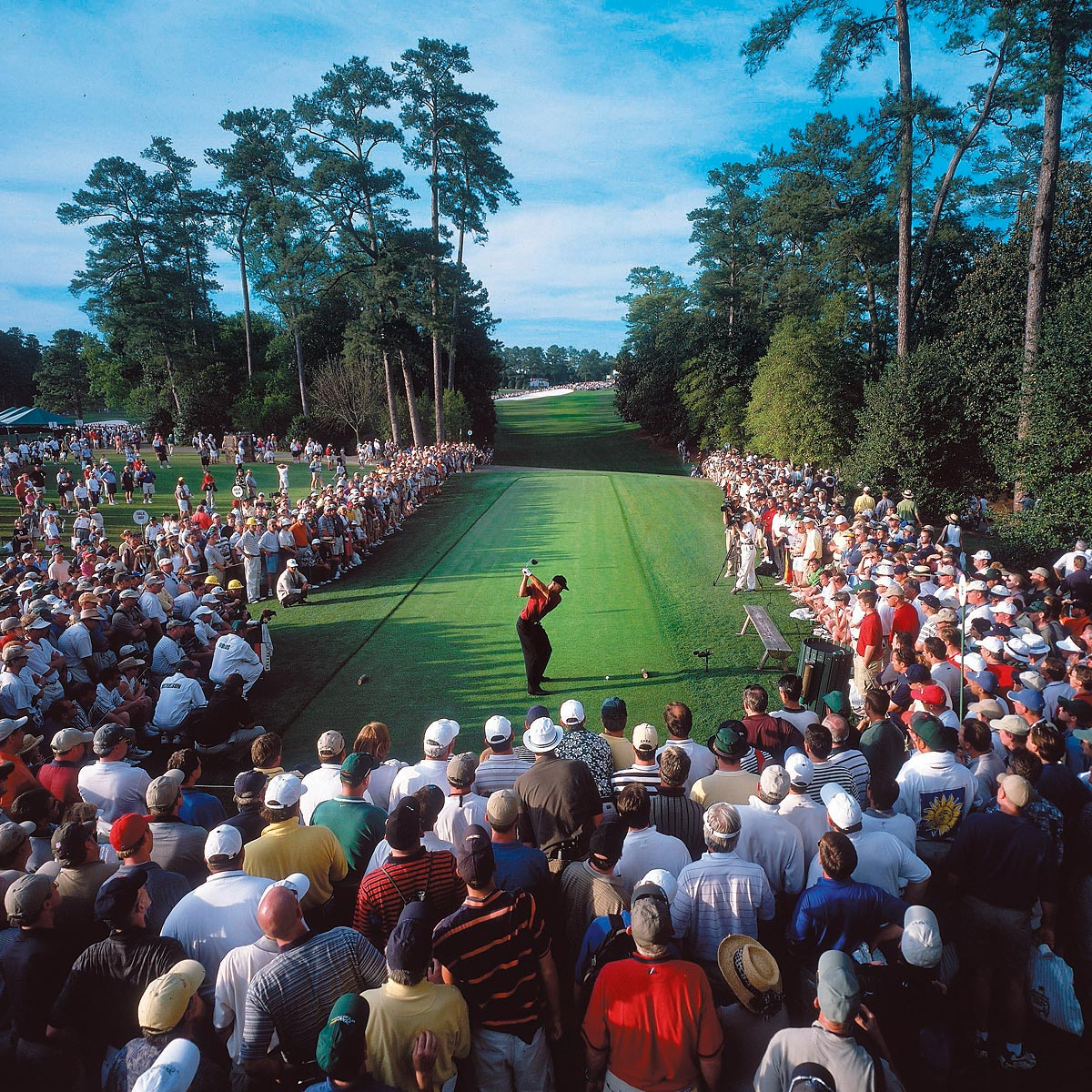 "Masters, April 8, 2001 | Tiger Woods tees off in the final round of the Masters, which he won by two strokes over David Duval. The win completed the ""Tiger Slam,"" Woods' run of four consecutive major championship victories."