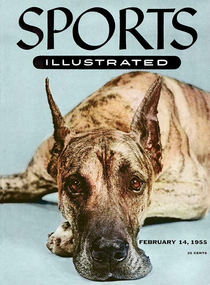 February 14, 1955