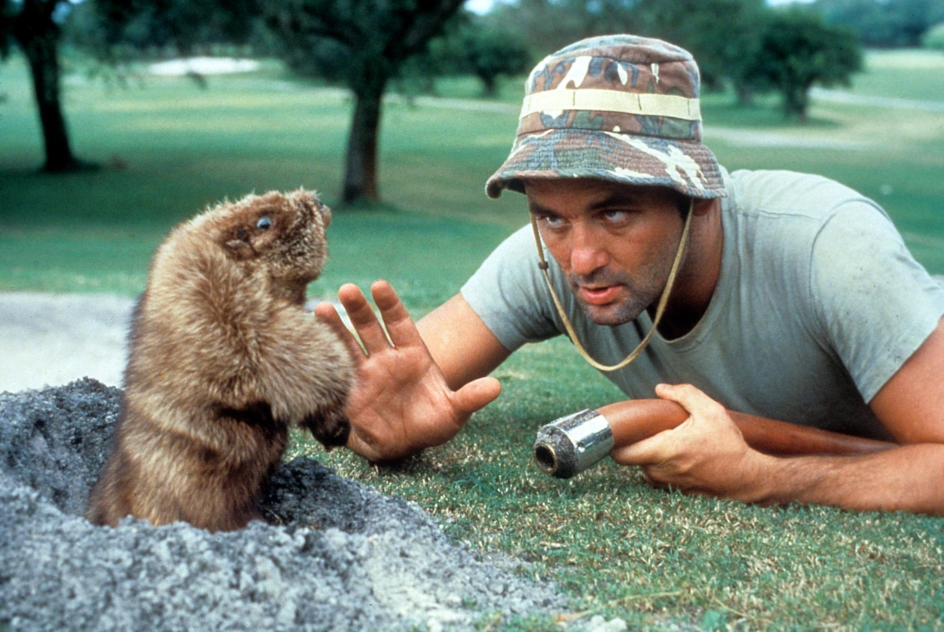 Bill Murray plays the groundskeeper Carl trying to kill a gopher in the 1980 film 'Caddyshack.'