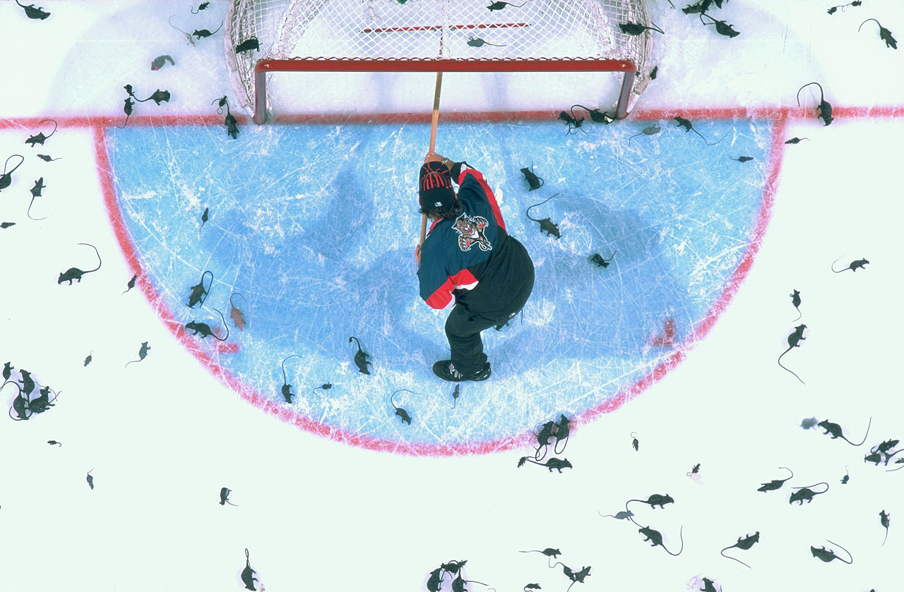 After Panthers forward Scott Mellanby killed a rat with his stick and then tallied two goals in the team's 1995-96 home opener, a tradition was born. Fans in Florida began tossing the plastic variety of the rodent onto the ice whenever a Panther scored. Alas, the team was treated to only two such showers in the Cup final, where it was swept by the Colorado Avalanche.
