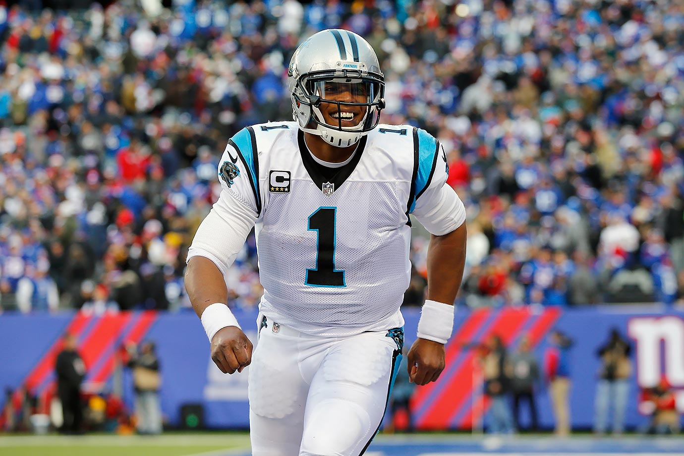 The Panthers and quarterback Cam Newton won their first 14 games of the 2015 season, doubling a franchise record set when the 1996 Panthers, in just their second season, won their last seven to finish at 12-4 and atop the old NFC West with Kerry Collins under center.