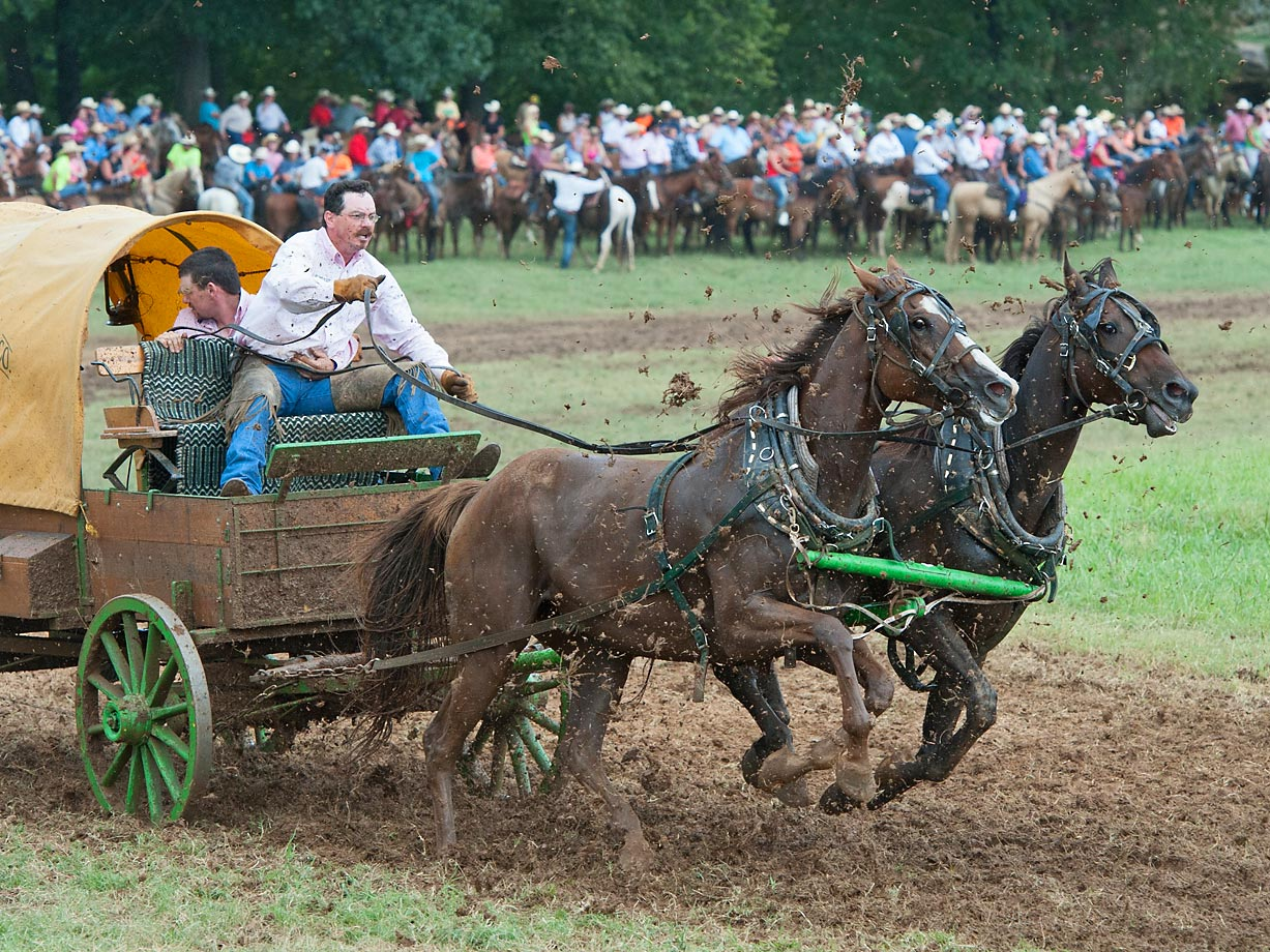 "Team ""Fast Cattle Co."" from Rosebud, AR race in the Classic Wagon Division."