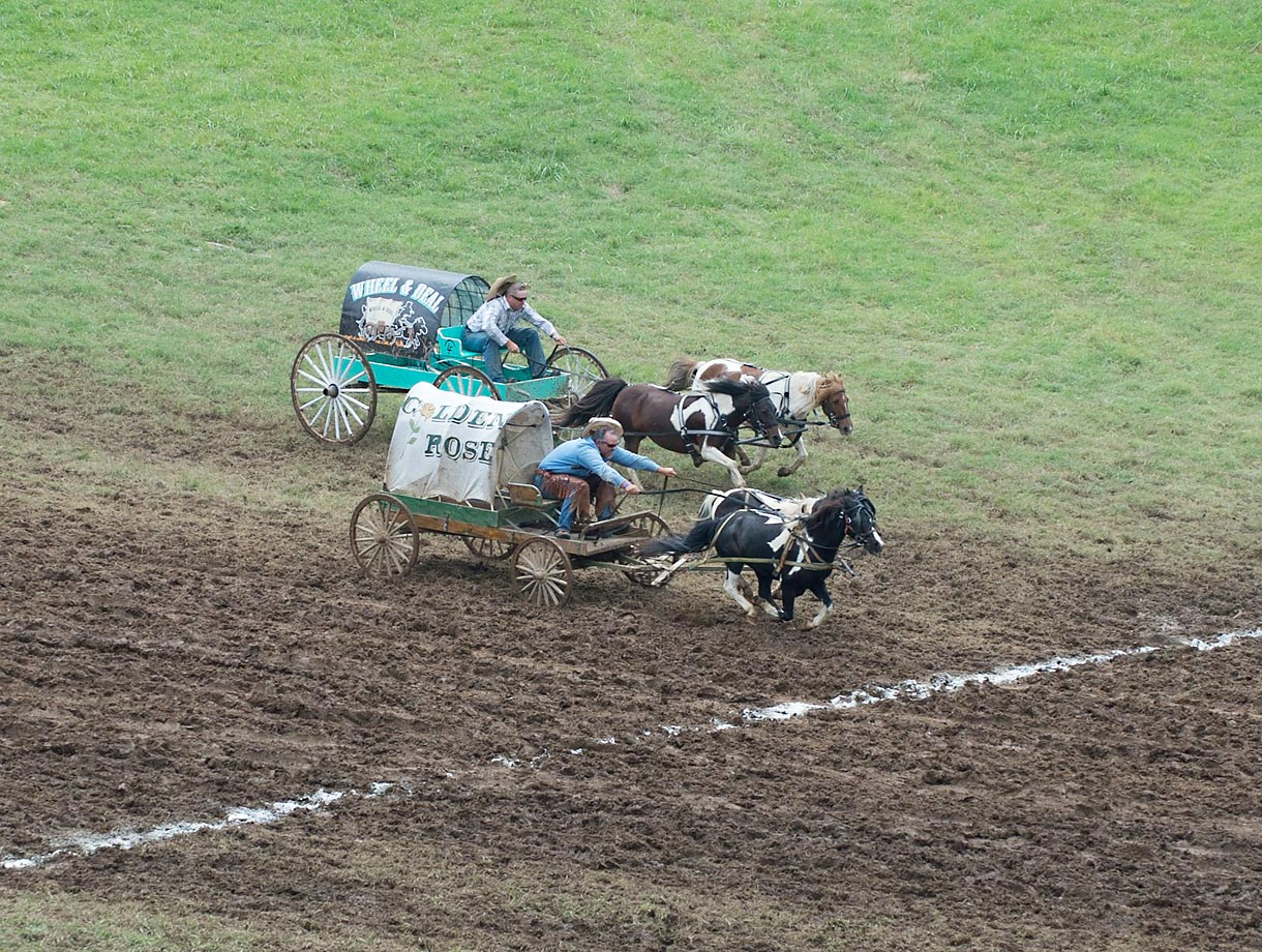 Competitors head to the finish in the 2014 National Chuckwagon Race Championship