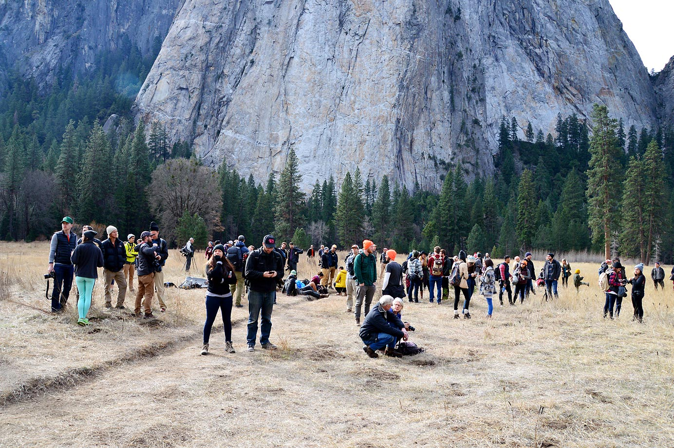 Crowds watch and wait anxiously in ElCap Meadow.
