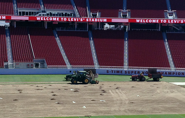 The San Francisco 49ers re-sodded the field at Levi's Stadium from goal line to goal line and sideline to sideline with longer grass.