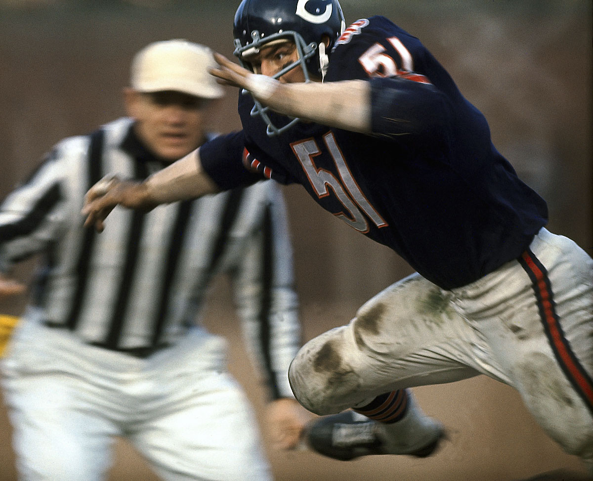 "St. Louis, Sept. 28, 1969 | Chicago Bears linebacker Dick Butkus, who Sports Illustrated anointed ""The Most Feared Man in the Game,"" makes his move during a game against the Cardinals. . Butkus was named the NEA NFL defensive player of the year at the end of the 1969 season."